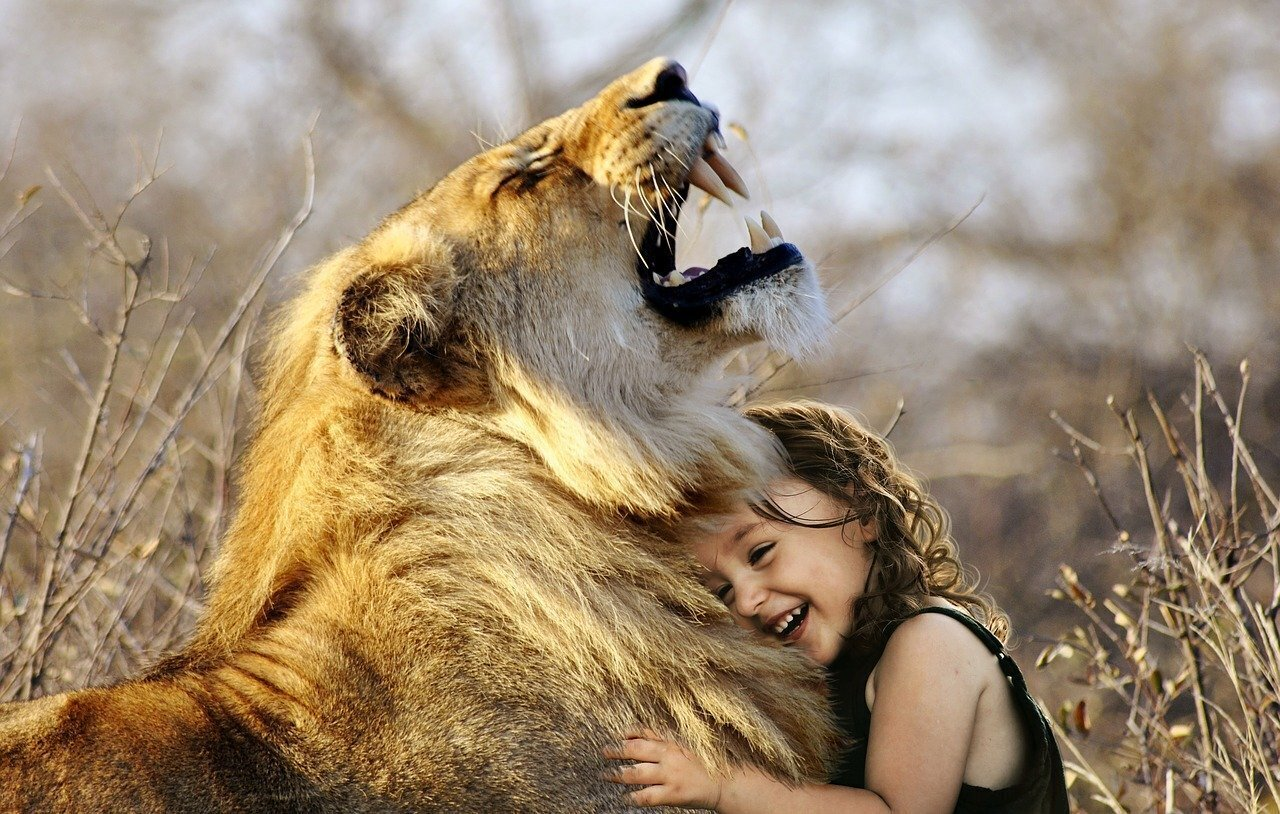 Baby Girl Playing with Lion