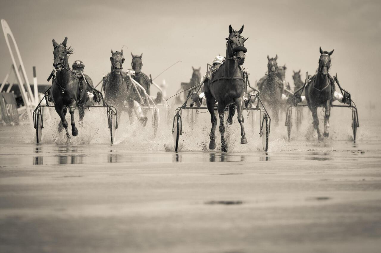 Grayscale Photo of Group of Horse With Carriage Running on Body of Water