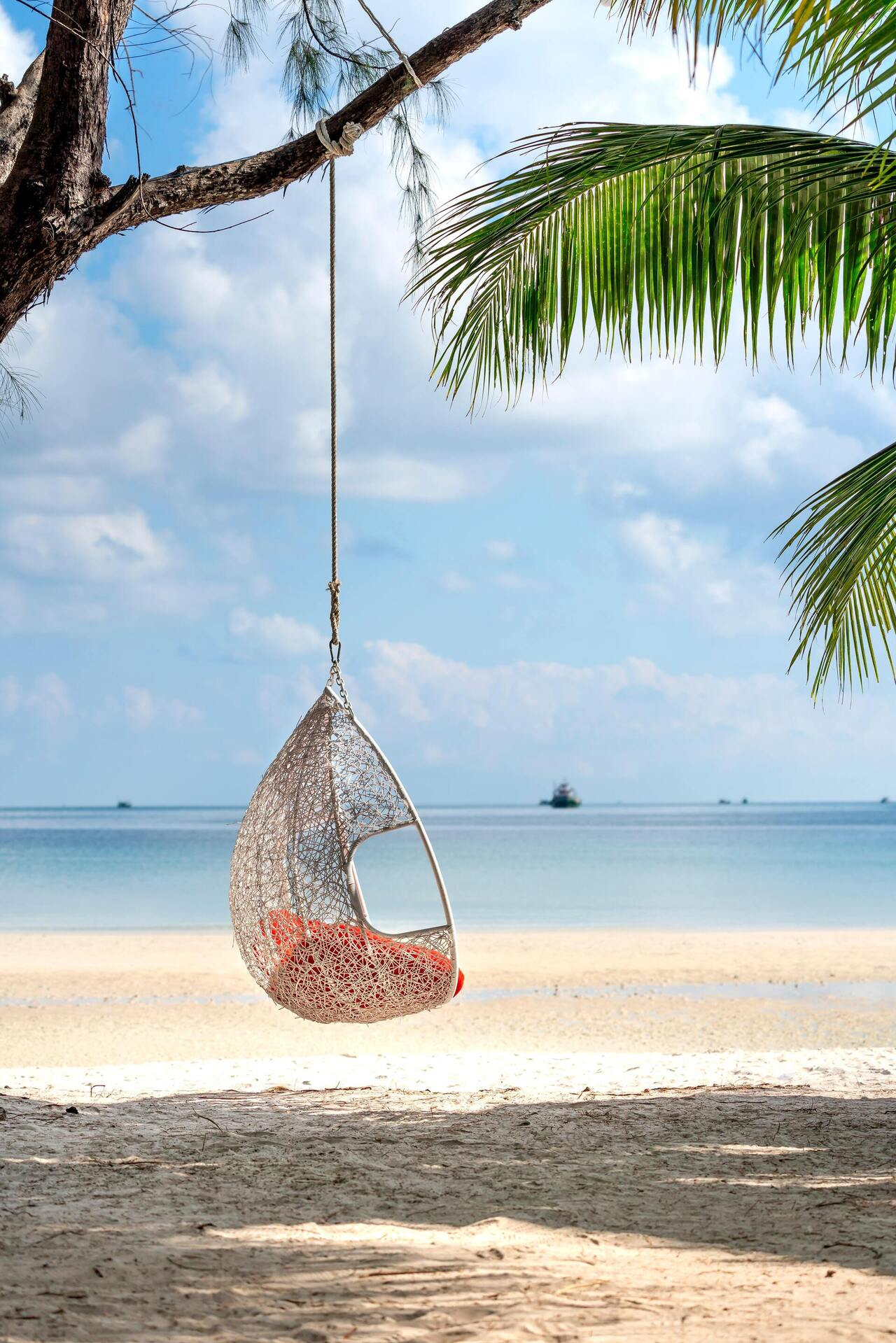 White Hanging Chair on Beach Tree