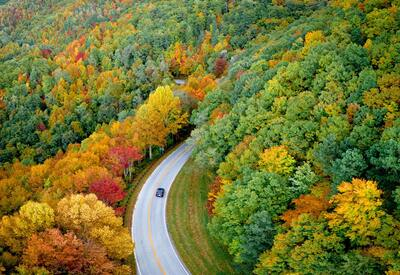 A Car and Road Between Nature Arial View