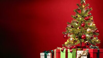 Amazing Pic of Christmas Tree and Gift