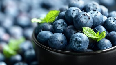 Blueberry Fruit HD Wallpaper