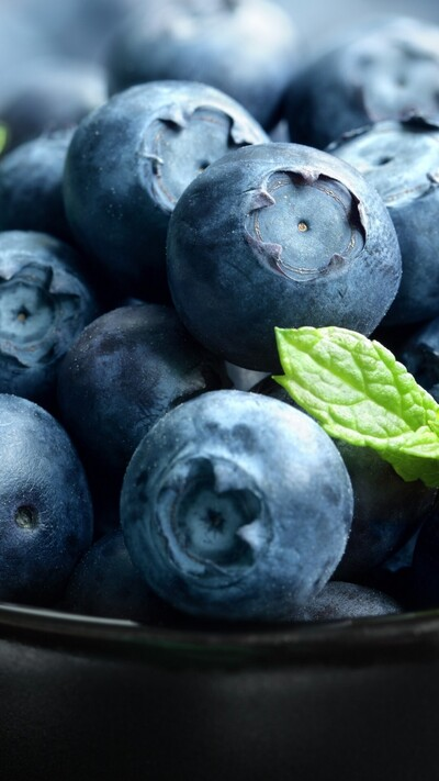 Blueberry Wallpaper