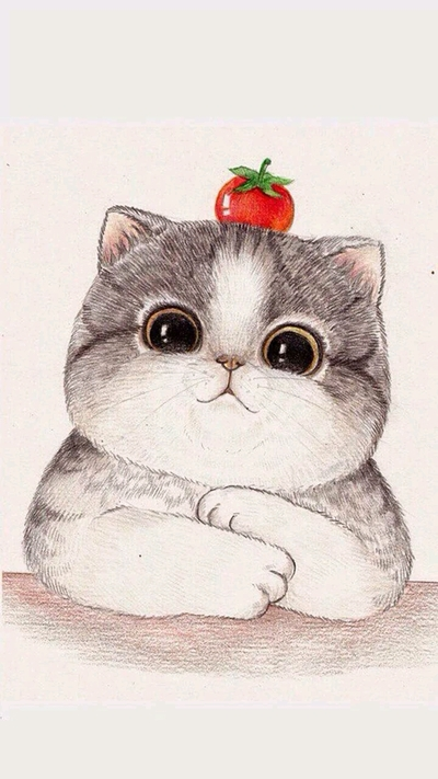 Chubby Kitty With Tomato Drawing