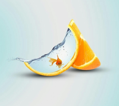 Creative Orange with Fish