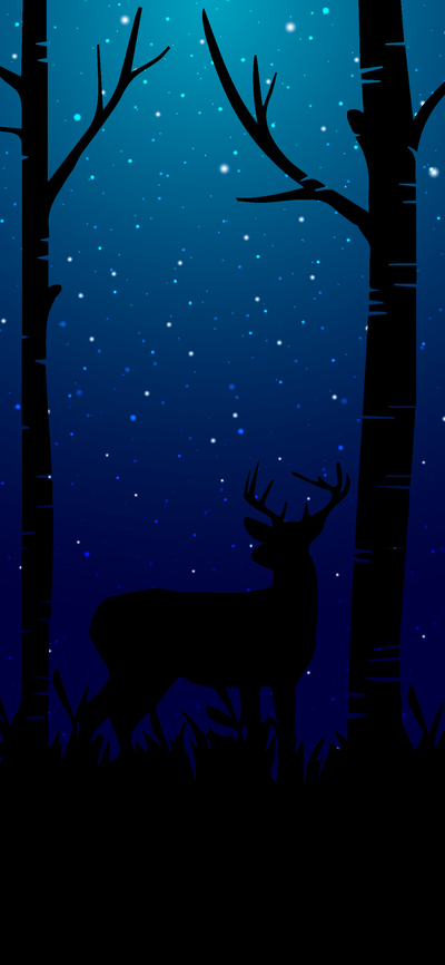 Deer in Forest Painting Photo