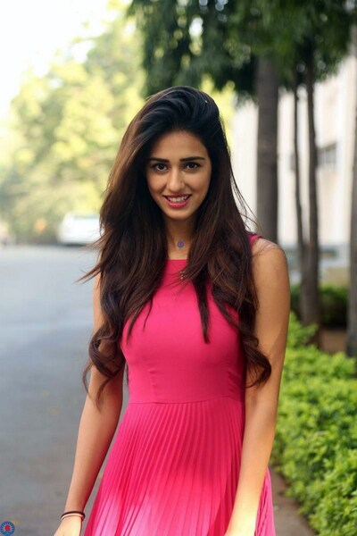 Disha Patani in Pink Dress Photo