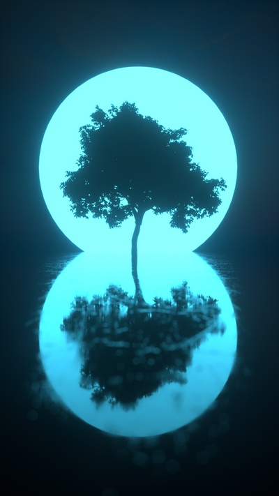 Glow Tree Shadow in Water Creative Pic