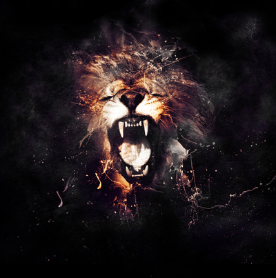 Lion Face in Black Background