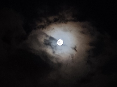 Moon in Night Pic