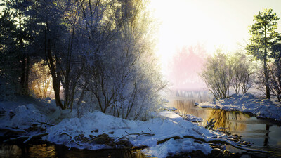 Winter Forest and River Image