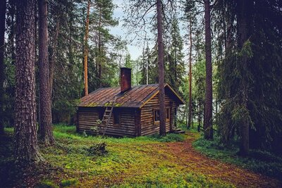 Wooden House in Forest Pic